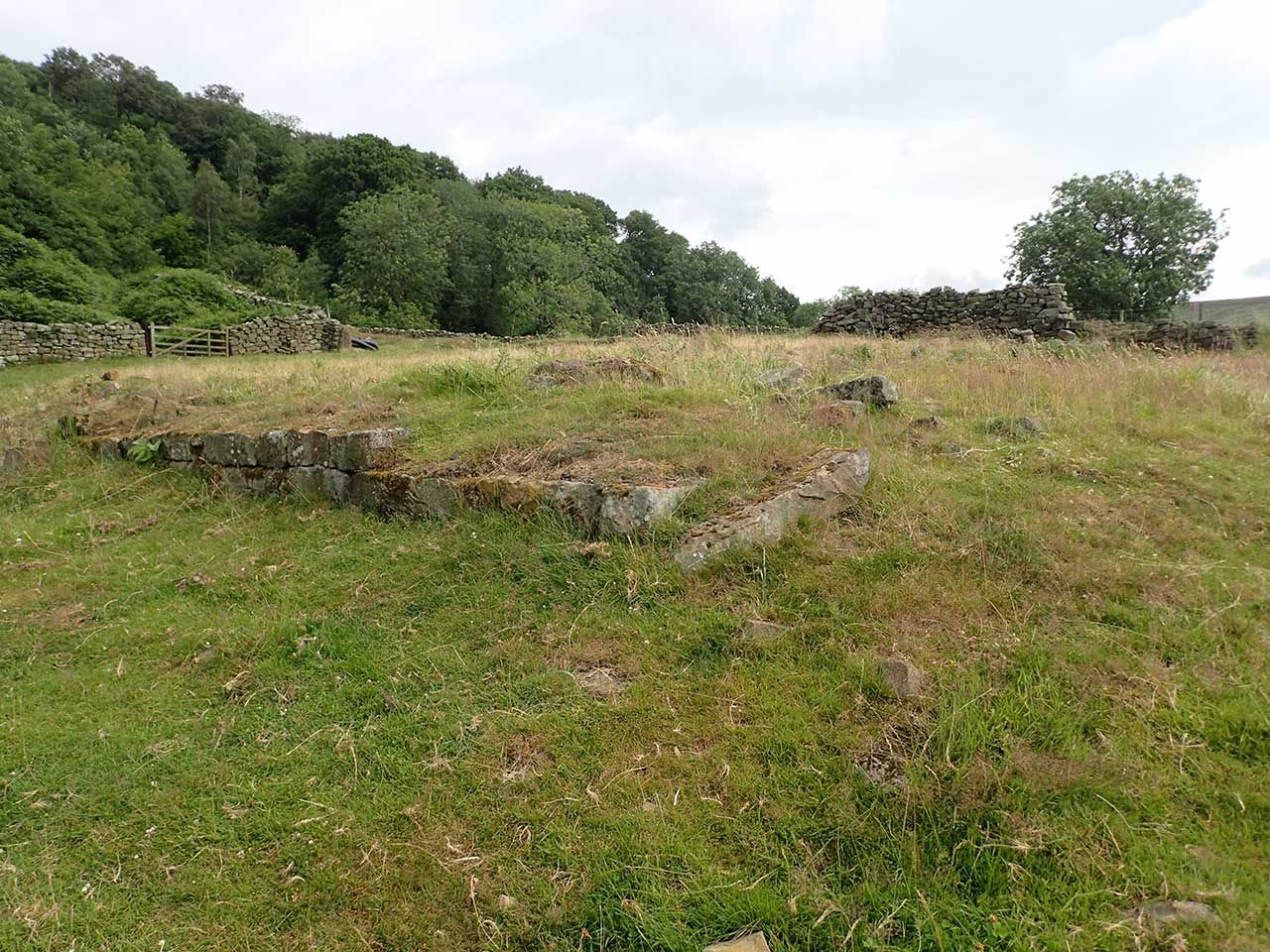 Northdale Head arm Site